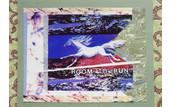 """Room to Run - Our Wild Horses"""
